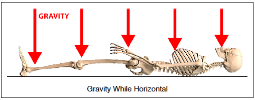 horizontal gravity exposure