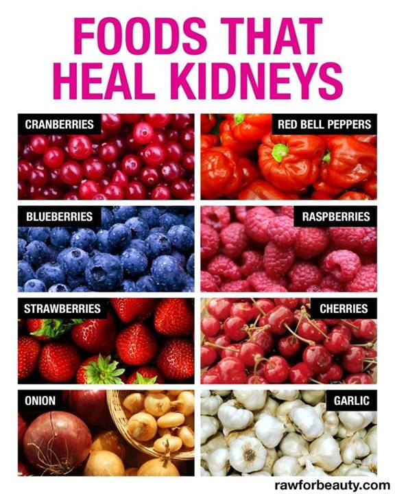 Food That Heal Kidneys Image