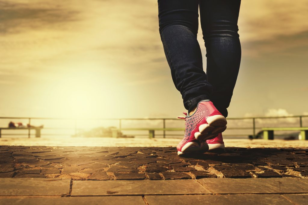 To Exercise or Not to Exercise: Understanding PEM in ME/CFS and the Potential Role of WBV